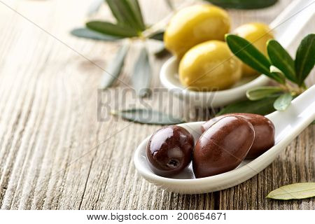 Olives, olive oil and olive branch on wooden light table