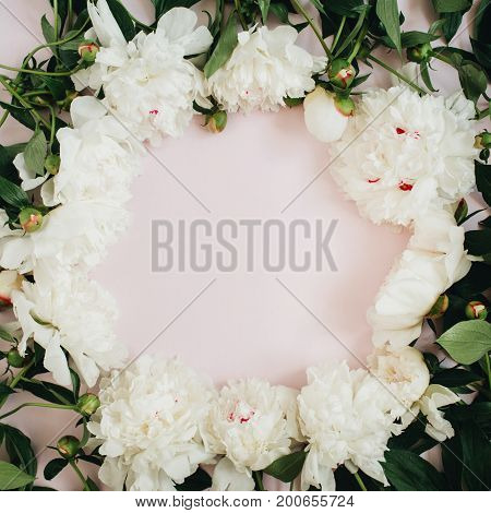 Frame wreath of white peony flowers branches leaves and petals with space for text on pink background. Flat lay top view. Peony flower texture.