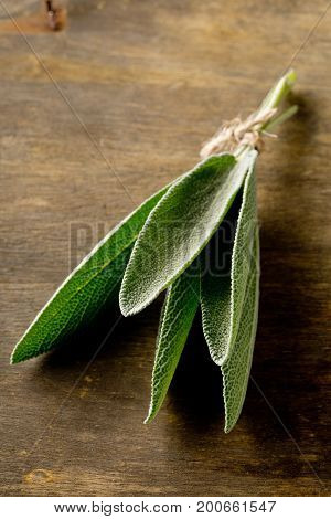 Bundled fresh harvested organic sage leaves on brown wooden cutting board background