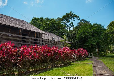 Traditional Wooden Houses And Bushes Of Red Color. Iban Longhouse Kuching To Sarawak Culture Village