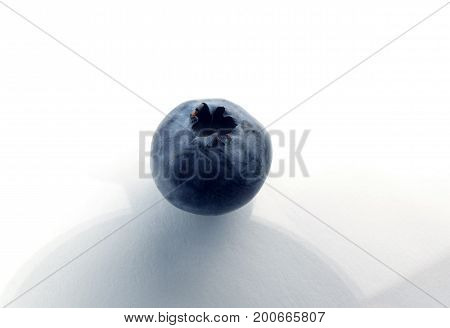 One blueberrie macro isolated on white background