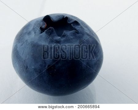 Blueberries macro shot isolated on white background