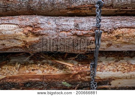 Ratchet and Chain Wrapped Around Logs on logging truck