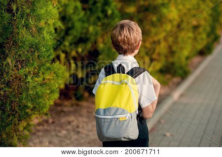 The boy in a white shirt is walking down the street to school. Back view