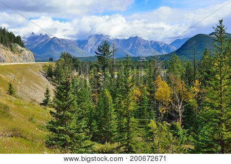 Foliage With Yellow, Red And Green Colors In The Canadian Rocky Mountains Along The Icefields Parkwa