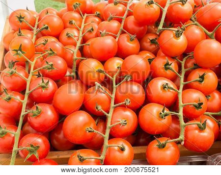 Fresh tomatoes in the organic farmer market