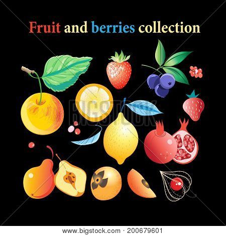 Vector set of bright tasty fruits and berries on a dark background