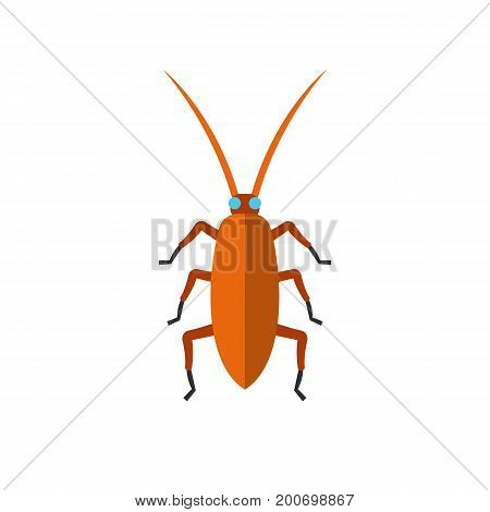 Icon of brown cockroach. Carrier of diseases, insecticides, horns. Pest control concept. Can be used for topics like cockroach control solution, insect, bug