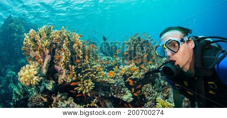 Underwater coral reef with man scuba diver exploring sea bottom. Tropical sea with beautiful ocean ecosystem.