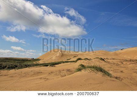 Sand dunes in Denmark. Rubjerg Knude west coast.