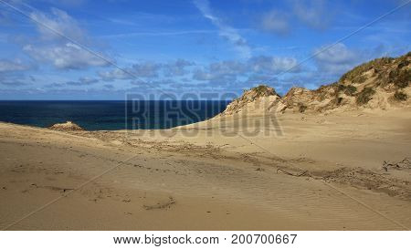 Sand dune and blue sea. Rubjerg Knude Denmark.