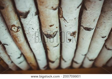 Not sawn birch logs. For the kindling fire. Close-up.