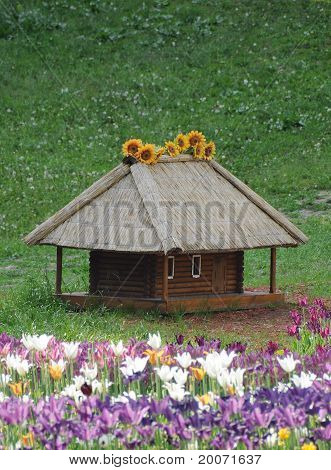 Traditional wood house under straw roof