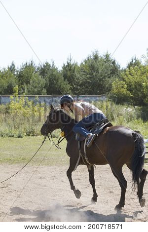 Horseback riding lessons - accident with horse, fall of rider, telephoto shot