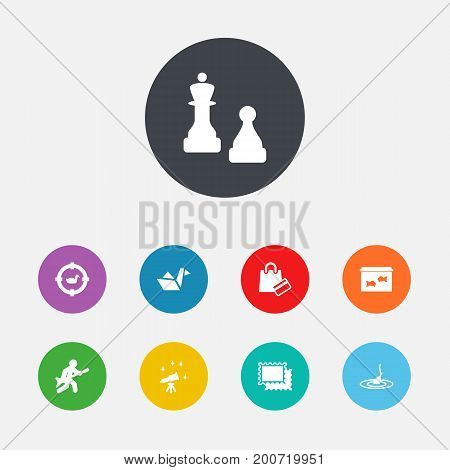 Collection Of Target, Checkmate, Playing And Other Elements.  Set Of 9 Hobbie Icons Set.