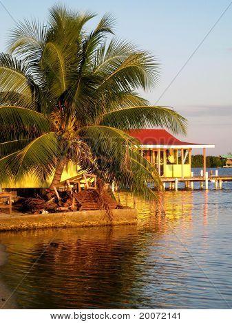 Belize baitshop