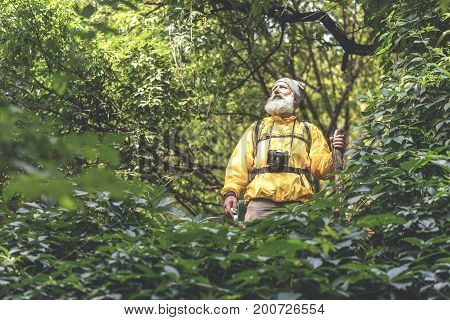 Low angle of thoughtful senior male traveler enjoying view from wild woodland place. He is standing in touristic clothing. Copy space