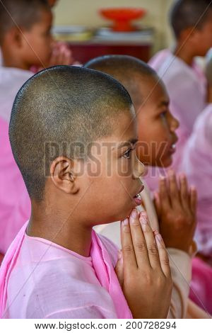 DAWEI MYANMAR - JULY 11 2015: Nuns in pink robes chanting in front of Buddha Image in Buddhist temple in Dawei of Myanmar.