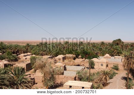 Dehseyf: Oasis Village In Lut Desert, Iran. Desert Village With Adobe Brick Houses And Phoenix Palms