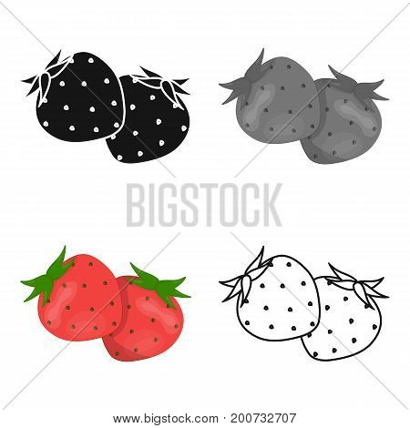 Strawberry, sweet and sour fruit.Fruit single icon in cartoon style vector symbol stock illustration .