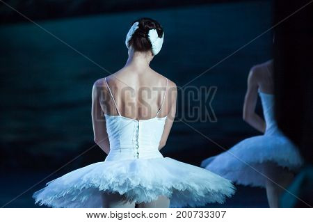 choreography, dancing, culture concept. back of adorable caucasian ballerina dressed in gleaming dress with tutu for dansing legendary ballet staging swan lake
