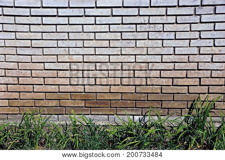 Gray brick wall of the house and green grass