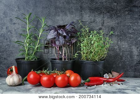 Composition with pots of herbs and vegetables on table