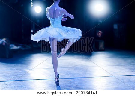 glory, dream, choreography concept. slender silhouette of female ballet dancer in the stage lights wearing beautiful tutu turning around like statuette in music box