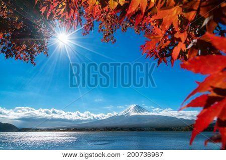 Mount Fuji In Autumn Color, Japan