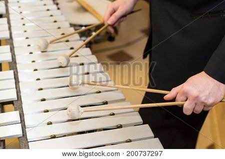 xylophone, playing musical instruments concept - closeup on wooden bars with four mallets in human hands, performer in black dress, glockenspiel, orchestra concert, art of music, selective focus