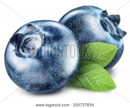 Blueberries. Macro shot. File contains clipping paths.