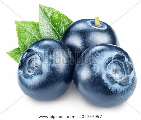 Blueberries and blueberries leaves. Macro shot. File contains clipping path.