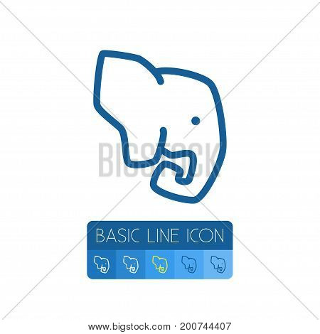 Indian Elephant Vector Element Can Be Used For Elephant, Trunked, Animal Design Concept.  Isolated Trunked Animal Outline.