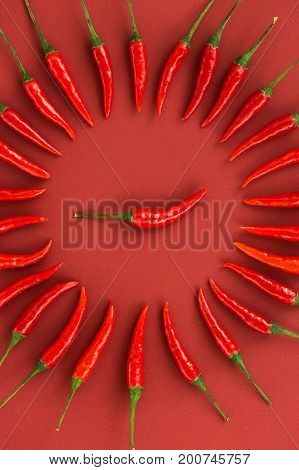 red hot chili peppers, popular spices concept - close up on decorative circle is made from red hot pepper pods on red background, in the middle is one pod, top view, flat lay