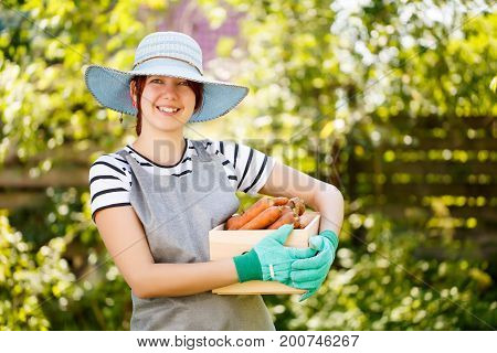 Photo of woman with carrot harvest in wooden box at garden