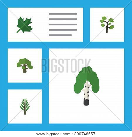 Flat Icon Nature Set Of Tree, Jungle, Oaken And Other Vector Objects