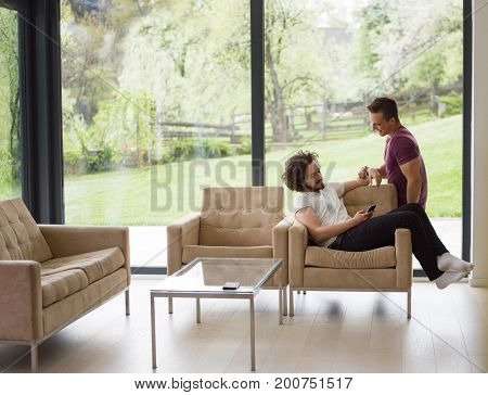 Gay Couple Love Home Concept. gay couple enjoying leisure time in living room