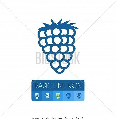 Berry Vector Element Can Be Used For Razz, Raspberry, Berry Design Concept.  Isolated Shrubby Plant Outline.