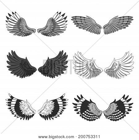 Collection of 6 pairs of elegant bird or angel spread wings isolated on white background. Symbol of flight and freedom. Monochrome vector illustration for logo, banner, advertisement, tattoo