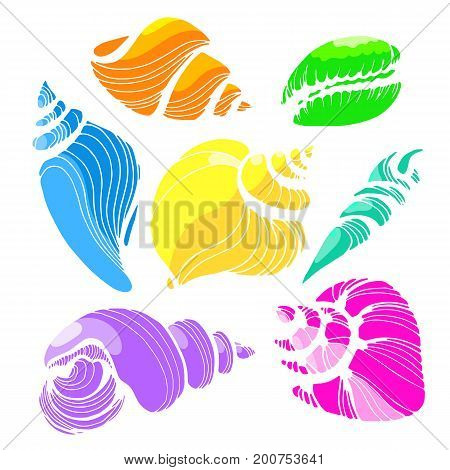 Color rainbow set with shapes of sea shells on white background. Vector illustration. Doodle isolated and grouped for easy editing.