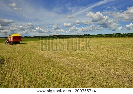 Undustrial harvesting of wheat, summer time, Europe