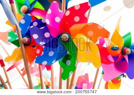 Colorful Pinwheels Against White Background