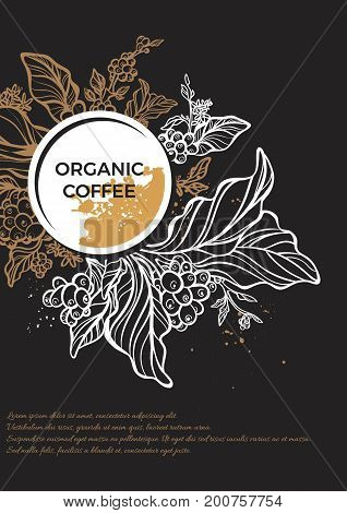White and gold branch of coffee tree with leaves flowers and coffee beans. Botanical drawing in circle. Art line. Floral decor for organic product. Vector illustration for template menu background
