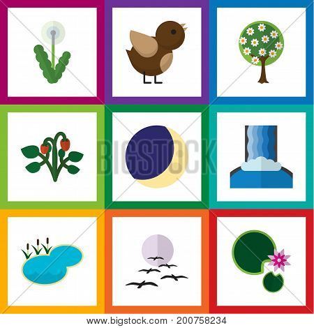 Flat Icon Bio Set Of Pond, Bird, Berry And Other Vector Objects