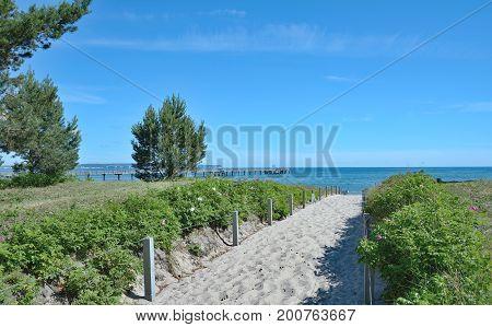 Footpath to Beach of Binz on Ruegen,baltic Sea,Mecklenburg western Pomerania,Germany