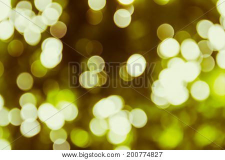 Many Yellow and gold circle bokeh burry background