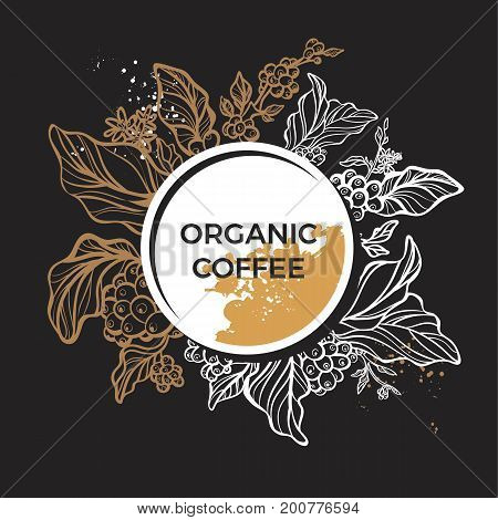 Template of realistic coffee branch with leaves flowers and beans on black background. Botanical drawing. Art line. Floral decor for organic product. Vector sketch