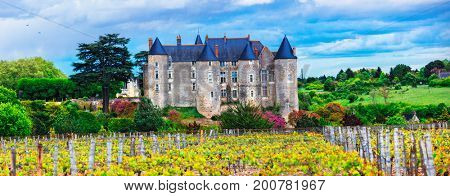 French castles and vineyards - heritage of France