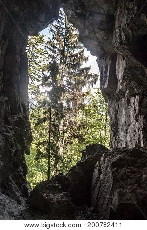 natural arch on Hrdosna skala hill above Komjatna village in Velka Fatra mountains in Slovakia with trees on the background and blue sky