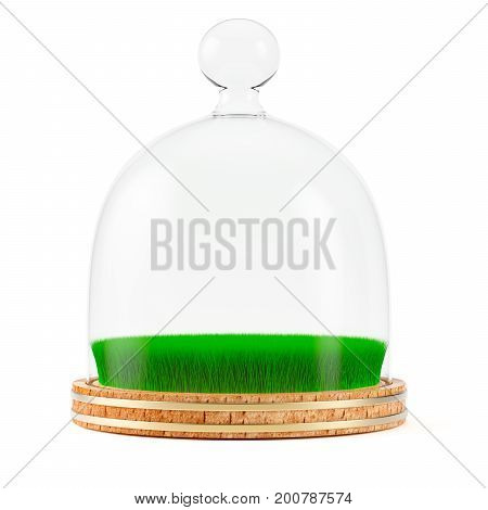 Green grass under glass dome on wooden plate isolated on white background. 3d rendering